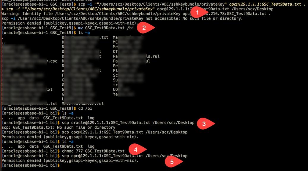 Essbase Cloud: Where's the MaxL Default Data Export Location